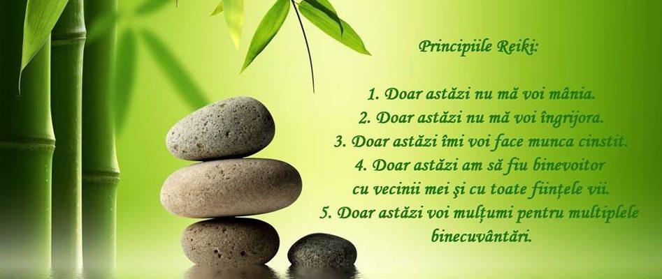 Principiile vietii si aspectul mistic al sistemului Usui de vindecare naturala