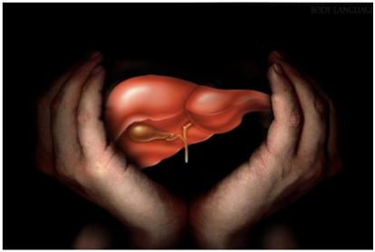 Afectiunile ficatului