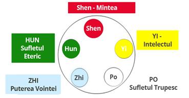 Cele 5 tipuri de Shen