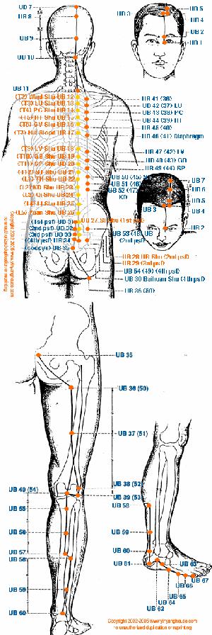 Meridianul vezicii urinare al piciorului