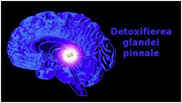 detoxifierea